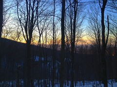 trees at dusk (Patrice Paquette) Tags: light sun sunlight snow mountains nature forest landscape hiking mount snowshoes sutton montsutton uploaded:by=flickrmobile flickriosapp:filter=nofilter