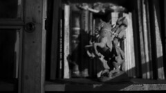 AD TEMPORE | cowboy story (Lopez Morton) Tags: horses blackandwhite blur blancoynegro baile documental