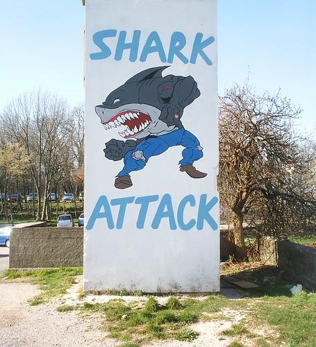 grobnik_sharkattack