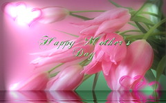 Happy Mother's Day (maf04) Tags: holiday flower reflection nature day tulips quote mothers ripples sunspot
