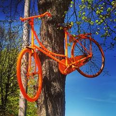 #bike #Riga #Latvia (Oleksandr Samoylyk) Tags: square squareformat unknown iphoneography instagramapp uploaded:by=instagram foursquare:venue=4bbf8cff4cdfc9b608759121