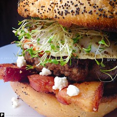 The Rancher Burger (KAC NYC) Tags: ranch cheese dinner lunch bacon beef burger signature egg goat pork event salty burgers roll friedegg rancher sprouts goatcheese slab alfalfa toasted kac alfalfasprouts thickcut burgersauce cookingin nationalburgermonth phude kacnyc phudenyc burgermonth