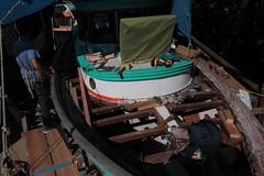 IMG_3938 - Port Hadlock WA - Northwest School of Wooden Boatbuilding - 2013 Repair and Restoration - HOBO - students beginning to install deck planking (BlackShoe1) Tags: wood port boat washington olympicpeninsula wash pacificnorthwest wa jefferson woodenboat washingtonstate hobo woodboat boatrepair countyeast porthadlockwa boatwooden hobohobohobo hadlockjefferson countymv repairwood tugwoodtug
