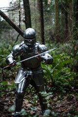IMG_1185 (praecordiaCore) Tags: forest armor sword