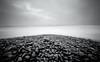 Torrey Pines, Pile O' Pebbles (_johnnelson_) Tags: sandiego pinhole tmax100 zeroimage zero69