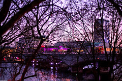 The forest for the trees... (Anand Balaji) Tags: bridge trees winter sunset reflection bus tree london net water buses field thames dof dusk bare waterloo depth neural