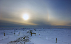 of snowy fields, sundogs and an ominous winter sun - HFF! (lunaryuna) Tags: sky landscape iceland fences nopeople lunaryuna sundog vastness wintersun hff strangesun wintermood fencefriday ominoussightings
