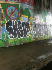 Shelt Snarl (laughing spinning dancing) Tags: graffiti providence snarl mw sabat shelt bigdogsinc
