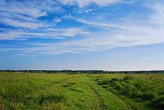 Utrina (Sareni) Tags: road light sky colors grass clouds spring serbia may put selo vojvodina twop srbija nebo banat 2016 polje trava prolece boje poljana svetlost oblaci livada poljskiput alibunar juznibanat sareni utrina