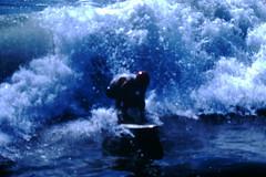 9-20-1969--Huntington Beach Calif (26) (foundslides) Tags: pictures ocean ca usa 1969 beach found photography coast photo surf kodak surfer picture surfing slidefilm 1960s kodachrome slides foundslides califronia transparencies srufers irmalouiserudd johnhrudd