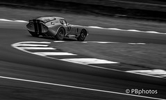 Masters Historic Festival - Brands Hatch. (Paul Babington Photography) Tags: brandshatch accobra americanmusclecars nikond750