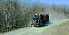 Big Timber (jr-transport) Tags: ontario logger custom heavy kenworth w900 cedarnarrows
