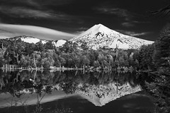 Otoo en Blanco y Negro (Roberto Cumsille) Tags: chile parque bw fall colores bn e otoo chil conguillio llaima araucania robertocumsille