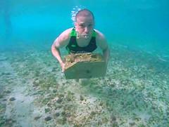 Capu Body Fit (lashawnpagan) Tags: ocean beach training island puertorico arecibo bodyboarding francastro capucamp galdodk