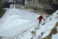 Gli insidiosi e adrenalinici passaggi sul ripido costone occidentale del Pizzo Berro (EmozionInUnClick - l'Avventuriero's photos) Tags: panorama neve sibillini escursionista pizzoberro