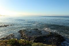 Tide View II (sweet.disposition) Tags: ocean california morning blue sea santacruz green water aloe rocks waves view tide salt iceplant westside tidepools westcliff