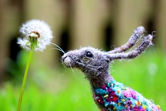 meadow flower hare (adore62) Tags: sculpture felted hare handmade felt embroidered needlefelted feltedfido embroideredfeltedhare