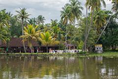 _DSC0902 (Roy Prasad) Tags: lake water river sony houseboat kerala prasad backwaters allapuzha rx10 allappey royprasad rx10m2