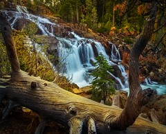 Glen Alpine Falls (Now 2 Eternity photography) Tags: california blue trees orange brown lake black tree green art nature water colors landscape flow waterfall spring air tahoe falls glen alpine stump cascade