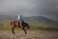 Cowboy (Warren - wh_nyc (On and Off)) Tags: people horse cloud mist mountains cowboy performance western rodeo photoofman