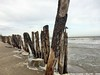 P1190360_IMG_4481_b (O Suave Gigante) Tags: estuary wexford coastalerosion wexfordharbour curracloe hookpeninsula hookheadlighthouse ballinesker sladeharbour northslob sladecastle ravenwoodnaturereserve theravennaturereserve ravenpointloop laffanfamily 1860sfaminereliefworksprogramme