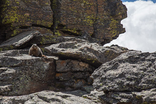 Rocky Mountain National Park 20