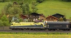 1448_2016_05_24_sterreich_Dorfgastein_CARGO_CargoServ_1216_932_&_1216_933_mit_Coilzug_&_1216_031_Villach (ruhrpott.sprinter) Tags: railroad schnee salzburg train germany logo deutschland graffiti austria ic sterreich diesel natur wiese eisenbahn rail zug cargo 64 berge nrw passenger es lm blume fret ore gelsenkirchen ruhrgebiet f4 freight bb badgastein locomotives 189 lokomotive amtc cityshuttle sprinter badhofgastein ruhrpott gter 1144 dorfgastein ekol 1116 dispo europischer 6189 mrce tauernbahn lokomotion reisezug rpool dispolok nordrampe ellok cargoserv logserv intercombi lokfhrerschein gastainertal rocktainer