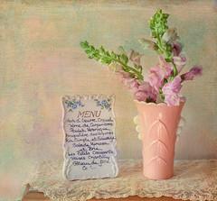 Menu (JMS2) Tags: pink flowers stilllife texture zeiss canon menu 50mm lace pastels vase