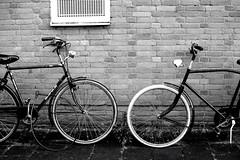 Two bikes (paulusvp1) Tags: street urban plants white black brick amsterdam bicycle wall 35mm wheels bikes headlights tires mirrored locked buitenveldert d3300