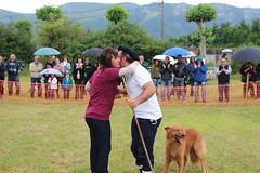 2016_Urdua_San Joan_artzain txakurra20160620_0001 (aiaraldea.com) Tags: urdua artzaintxakurra