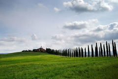 Poggio Covili (agosto957) Tags: italia toscana valdorcia albero bagno vignoni cipresso poggiocovili