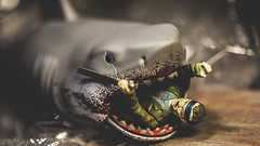 The Mighty Quint (3rd-Rate Photography) Tags: macro canon movie toy shark florida bruce 100mm jaws horror jacksonville universal reaction funko quint brucetheshark toyphotography 5dmarkiii earlware 3rdratephotography