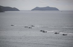 160618-M-MO883-088 (U.S. Pacific Fleet) Tags: green thailand sailors marines usnavy meet greet carat portvisit thl lcac amphibiouslanding 2ndbattalion cooperationafloatreadinessandtraining ussashlandlsd48 2ndmarines us7thfleet forwardpresence thaiarmedforces