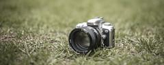 F75/N75 + 85mm f/1.4D (ruimc77) Tags: camera panorama slr film grass lens 50mm nikon pano 85mm gear grama porn nikkor ais f12 n75 f75 f14d d810