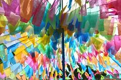 Festa de São João na Bahia (Márcia Valle) Tags: winter brazil colors brasil nikon bahia tropical prado inverno colorido bandeirinhas festadesãojoão d5100 márciavalle