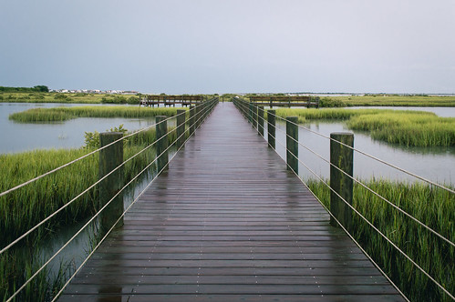 Bridge to the marsh