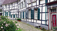 """Once Upon A Time..."" (TablinumCarlson) Tags: leica plants 6 house fairytale germany deutschland outdoor timber north blumen architektur nrw rosen ruhrgebiet gebude nordrheinwestfalen hattingen halftimbered dlux gasse fachwerk fachwerkhaus folwers timberframed rhinewestphalia enneperuhrkreis"