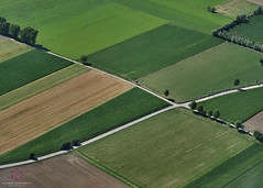 Fields patterns (Claudio Cantonetti) Tags: road above travel trees sky italy green nature yellow landscape countryside spring nikon europe pattern open top flight aerial fields crossroad claudio aerea aereal agricol d7000 cantonetti