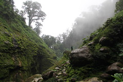 Catarata del Toro (elisecavicchi) Tags: trees costa mist green weather fog del america season waterfall moss stones central overcast rica hike explore rainy crater lush toro catarata overgrowth wayfarer traveler