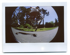 Day 119/365 - Skate Top (Sean Culligan) Tags: sf project san francisco day sean every 365 everyday culligan