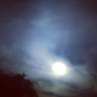 #sun #sunset #evening #sky #sora #aoi #青い空 #太陽