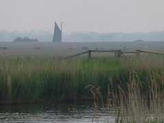 Wherry in the mist, Norfolk (mira66) Tags: mist river still norfolk sail waters eastanglia albion broads wherry thurne