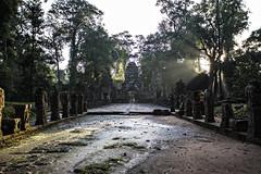 into the light (mephistofales) Tags: light sunrise dawn ancient cambodia southeastasia khmer angkorwat unescoworldheritagesite jungle temples shrines shafts angkorthom siemreep thaprom