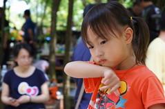 DSC05153 () Tags: sony taiwan 1680 a55 1680mm  twlife slta55v  anlong77