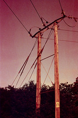 Pylon, redscale (Skink74) Tags: uk england film 35mm grid wire power cable hampshire pole pylon infrastructure electricity fujifilm canon50f18 135 hursley highvoltage canoneos650 c41 redscale tetenal canonef50mm118 fujicolorc200 e650c001