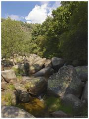 130906_Madrigal de la Vera_26 (ManuMartinlop) Tags: senderismo piedras cascada rutas potro finca extremadura higueras higos cauce lavera río madrigaldelavera cáceres montañas excursión gargantadealarcón picodealmanzor