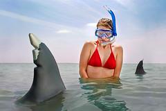 KHeck_PhobiaSharks_2 (Kelly Heck) Tags: swimming sharks phobia swimmingintheocean swimmingwithsharks openocean selachophobia kellyheckphotography kellyheck fearofshares sharkphobia karchariasophobia