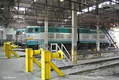 E655 087 (Luigi Basilico) Tags: italian milano rotonda bahnhof trains locomotive bahn tigre freight locomotives deposito caimano e652 e655 smistamento e633