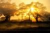 Day Break on the farm (dazza17 - DJ) Tags: water night sunrise stars dawn hdr jacobswell