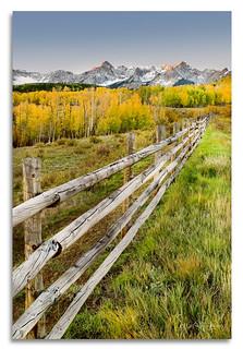 Fence posts, sunrise